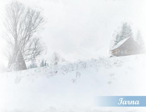 Bucovina, iarna