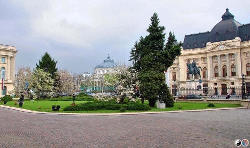 Bucuresti (1)