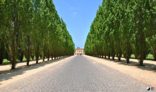 Versailles (42)