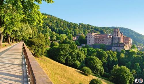 Heidelberg (13)