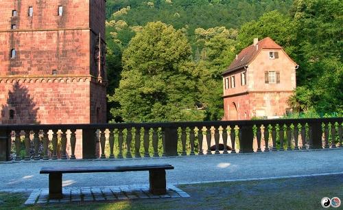 Heidelberg (17)