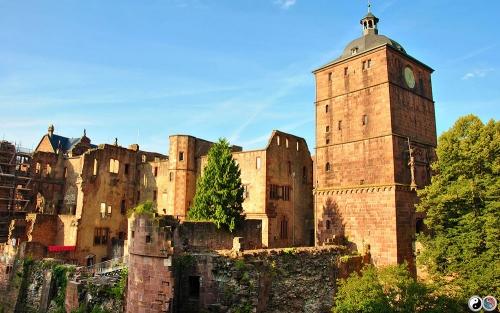 Heidelberg (21)