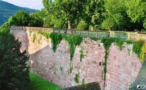 Heidelberg (25)