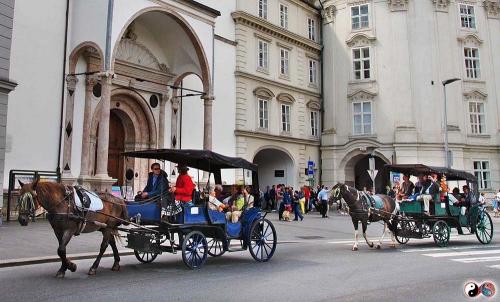 Innsbruck (15)