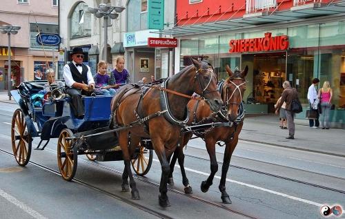 Innsbruck (16)